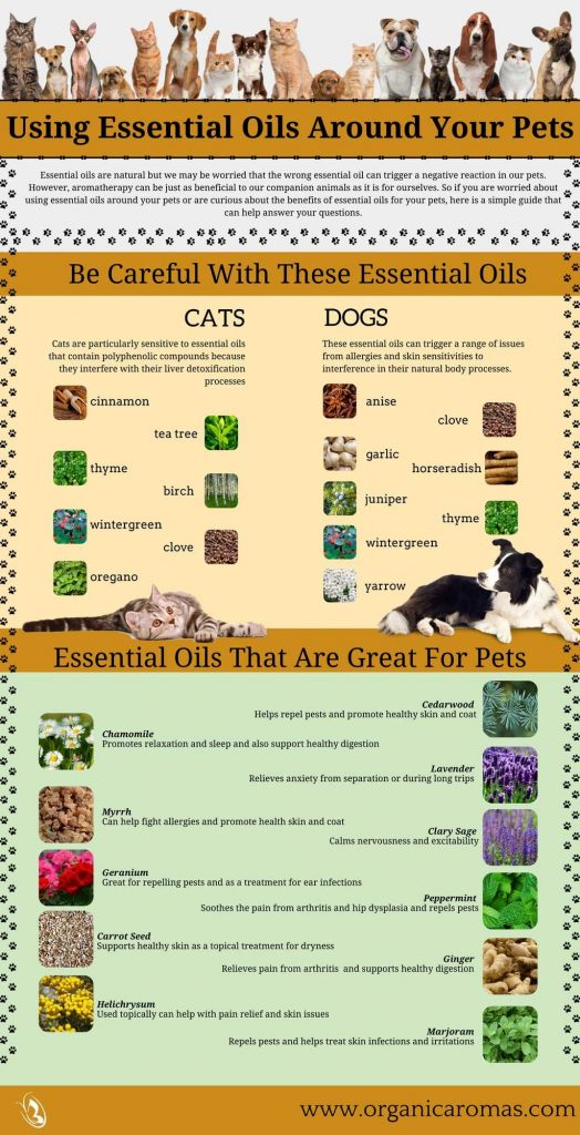 Which Essentail Oils Are Safe For Cats And Dogs